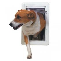 9 Do's and Don'ts When Buying a Dog Door