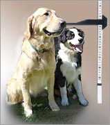 Measuring for doggie doors is very important so dog doors for sliding glass doors fit properly.