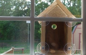 Birdhouse window