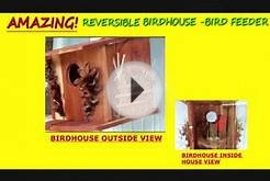 WINDOW BIRDHOUSE & FEEDER COMBO